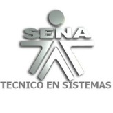 Técnico en Sistemas SENA