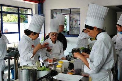 Estudia Gastronomia